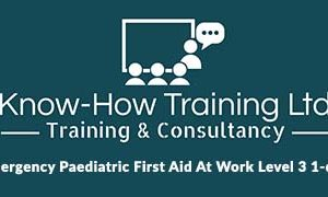 Emergency Paediatric First Aid At Work Level 3 1-day